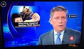 Selfies with Bears
